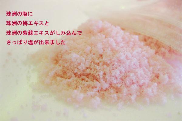 珠洲の塩に珠洲の梅エキスと珠洲のしそエキスがしみ込んでさっぱり塩ができました